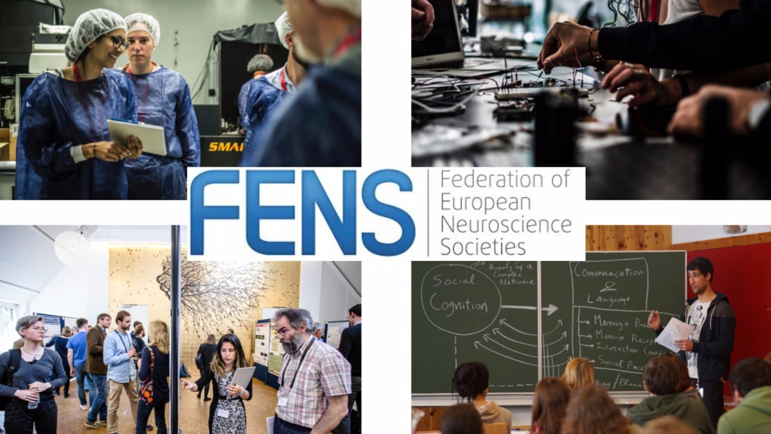 Why Educators Trained In Neuroscience >> Fens Higher Education And Training Opportunities Mediterranean